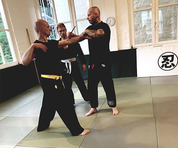 2b-Inhaltsseite-Kampfsport-Ninjutsu-1